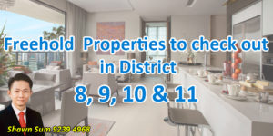 Blog Post on Freehold properties to check out in district 8,9,10,11